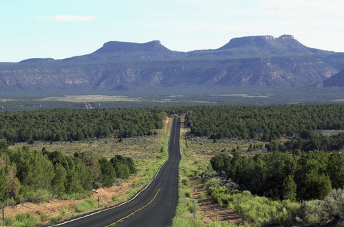 "Where is it?  Utah State Road 261 heading north across Cedar Mesa towards the ""Bears Ears"" in San Juan County. Utah has spent several hundred thousand dollars on an economic study of the costs and benefits of the state potentially taking control of tens of millions of federal acres, with the final product due in November. Photo by Al Hartmann. 08/12/2000"