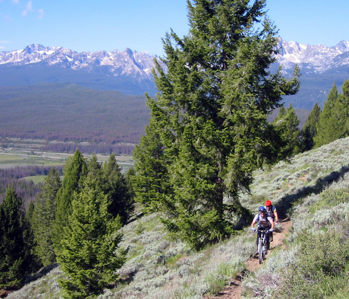 This image provided by Chris Cook shows mountain bikers traversing the Boundary Creek Trail on the ouskirts of the proposed Boulder-White Clouds wilderness area in central Idaho near Sun Valley in 2004. Mountain bikers would be barred from this area under a bill gaining steam in Congress. Since the 1980s, the legal definition of wilderness has prohibited mechanized transportation like ATVs, dirt bikes and, inexplicably to some, mountain bikes. (AP File Photo/Chris Cook)