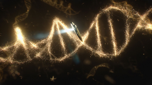 """The relatedness of all living things and the possible evolution of life in the universe is explored in the all-new """"Some of the Things That Molecules Do"""" episode of """"Cosmos: A Spacetime Odyssey."""" Courtesy Fox"""