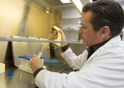 Rick Egan  |  The Salt Lake Tribune  Doug Schmid in the lab at Utah Cord Bank, Thursday, May 1, 2014.  Utah Cord Bank is pushing to expand operations, giving parents more options for banking their babies' cord blood