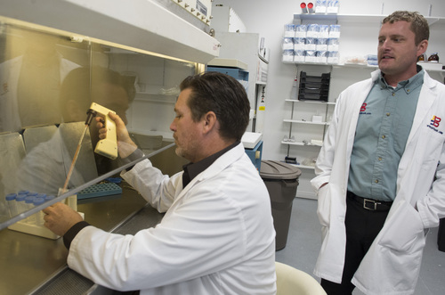 Rick Egan  |  The Salt Lake Tribune  Doug Schmid (left) and Eliott Spencer (right) in the lab at Utah Cord Bank, Thursday, May 1, 2014.  Utah Cord Bank is pushing to expand operations, giving parents more options for banking their babies' cord blood