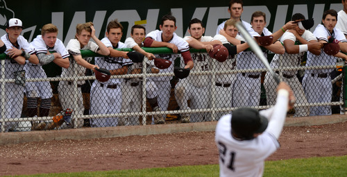 Steve Griffin  |  The Salt Lake Tribune   The Jordan bench holds out their rally caps as the Beetdiggers bat during the 5A State baseball championship game against Pleasant Grove at Brent Brown Ballpark on the UVU campus in Orem, Utah Friday, May 23, 2014.