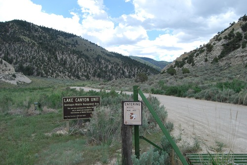 Brian Maffly   The Salt Lake Tribune   The state Division of Wildlife Resources has postponed plans to auction a 1,070-acre piece of Lake Canyon, part of a wildlife management area it maintains in Duchesne County.