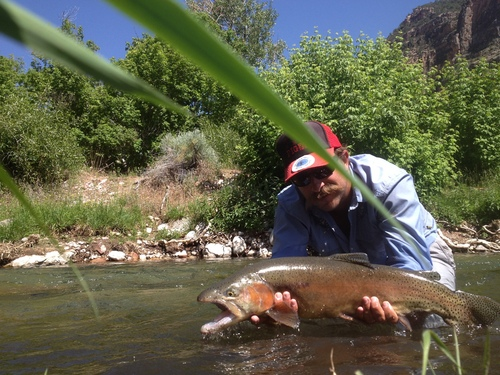 Colby Crossland, of Spinnerfall guide service on the Green River, caught this fish on a day his clients canceled because of high water. (Courtesy)