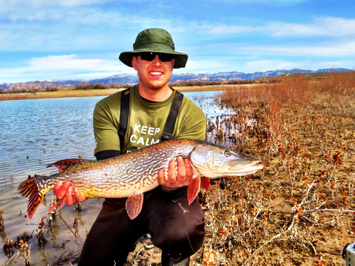 Tyler shows off his catch at Yuba Reservoir. (Courtesy)