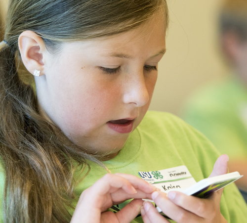 Rick Egan  |  The Salt Lake Tribune  Kaisa Nelson participates in a card game of financial Solitare, during an activity to learn  about personal financial, during a conference taught by Utah County 4-H Teens Reaching Youth, at Fidelity investments, in American Fork, Monday, July 7, 2014