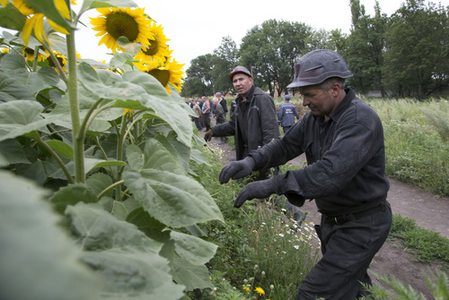 Ukrainian coal miners search the site of a crashed Malaysia Airlines passenger plane near the village of Rozsypne, Ukraine, eastern Ukraine Friday, July 18, 2014. Rescue workers, policemen and even off-duty coal miners were combing a sprawling area in eastern Ukraine near the Russian border where the Malaysian plane ended up in burning pieces Thursday, killing all 298 aboard. (AP Photo/Dmitry Lovetsky)