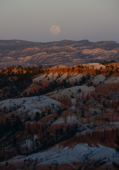 Franciso Kjolseth  |  The Salt Lake Tribune Bryce Canyon, famed for its dark skies is a great place to marvel at the stars and this blood moon.