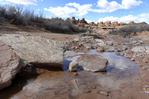 Al Hartmann  |  The Salt Lake Tribune  Creek flows through Canyon Rims area just north of U-111.  It is an area up for consideration for inclusion into an expanded Canyonlands National Park.