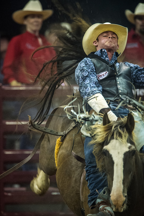 Chris Detrick  |  The Salt Lake Tribune Kyle Brennecke, of Grain Valley, Mo., competes in bareback riding during the Days of '47 Rodeo at EnergySolutions Arena Tuesday July 22, 2014.