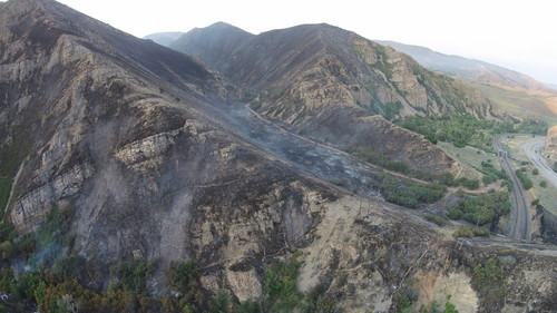 The Tunnel Hollow Fire in Morgan County. (Courtesy Bureau of Land Management)