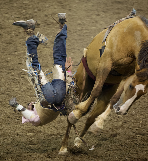 Steve Griffin     The Salt Lake Tribune   Kody Lamb, of Sherwood Park, Alberta, Canada, gets bucked off his horse during the bareback competition during the Days of '47 Rodeo at EnergySolutions Arena in Salt Lake City, Utah Wednesday, July 23, 2014.