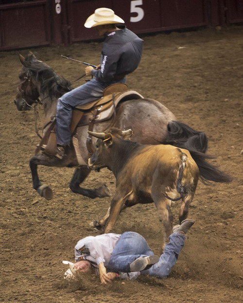 Steve Griffin     The Salt Lake Tribune   K.C. Jones, of Decatur, Texas, slams to the ground after missing his steer in the steer wrestling competition during Days of '47 Rodeo at EnergySolutions Arena in Salt Lake City, Utah Wednesday, July 23, 2014.