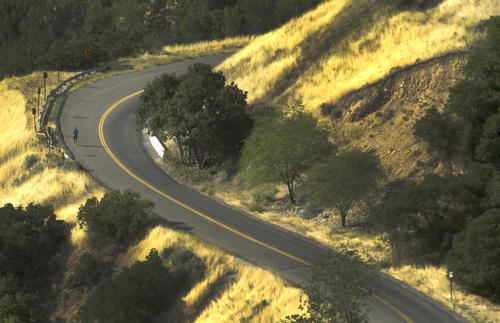 Rick Egan  |  The Salt Lake Tribune  A runner makes his way up city creek canyon, Friday, July 25, 2014