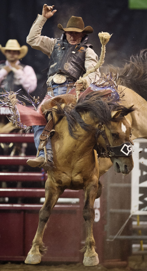 Steer wrestling injuries