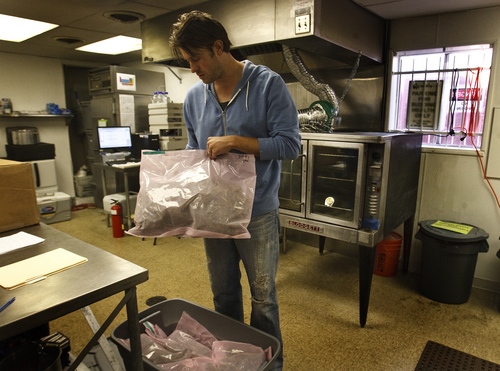 Leah Hogsten  |  The Salt Lake Tribune Charlotte's Web cannabis buds and leaves arrive at the Realm of Caring's lab in vaccum sealed bags and stored in bins to protect them from light, which can cause them to chemically degrade, October 25, 2014.