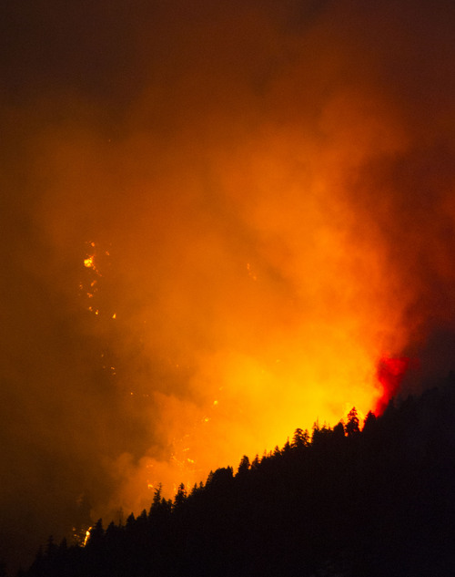 Steve Griffin  |  The Salt Lake Tribune   A wildfire burns in the mountains above Levan, Utah Thursday, July 24, 2014.