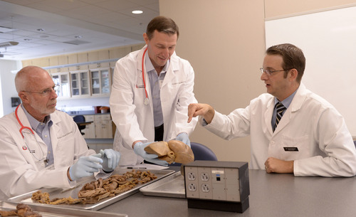 "Al Hartmann  |  The Salt Lake Tribune  Phillip Clinger, vice chair of the University of Utah Board of Trustees, left, and Utah Rep. Michael Kennedy get a lesson in human anatomy from U. professor of neurobiology and anatomy David Morton. He examines a large intestine and a liver at a laboratory at the University of Utah Medical School.  Policymakers got a taste of what medical students endure at a one-day ""Mini Medical School"" designed to help leaders understand what it takes to educate the country's next generation of health care professionals."