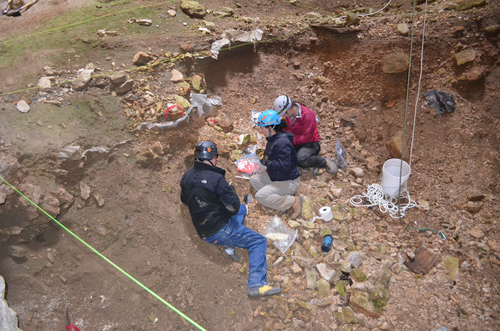 This July 2014 image provided by the Bureau of Land Management shows Justin Sipla, from left, Julie Meachen, and Jenna Kaempfer collecting samples for analysis inside the Natural Trap Cave in north-central Wyoming. The cave holds the remains of tens of thousands of animals, including many now-extinct species, from the late Pleistocene period tens of thousands of years ago. Scientists have resumed digging for the first time in more than 30 years. (AP Photo/Bureau of Land Management)