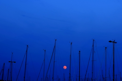 """A supermoon raises over Fiskeback harbor with sailing boats, outside of the Gothenburg, Sweden, Sunday, Aug. 10, 2014. The supermoon phenomenon, which scientists call a """"perigee moon,"""" occurs when the moon is near the horizon and appears larger and brighter than other full moons. (AP Photo/Petros Karadjias)"""