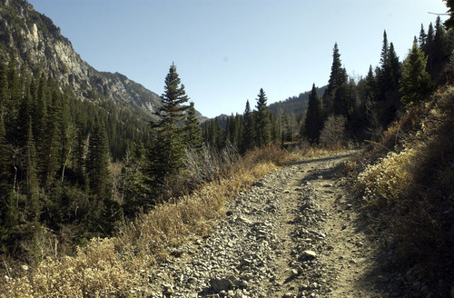 Al Hartmann/The Salt Lake Tribune A missing hiker was found dead in Little Cottonwood Canyon.