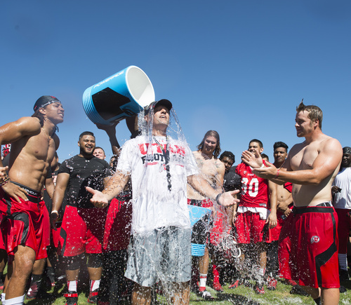 Rick Egan  |  The Salt Lake Tribune  Utah head coach Kyle Whittingham (center) has ice water poured on his head as part of the Ice Bucket Challenge, to raise awareness for ALS, Friday, August 15, 2014