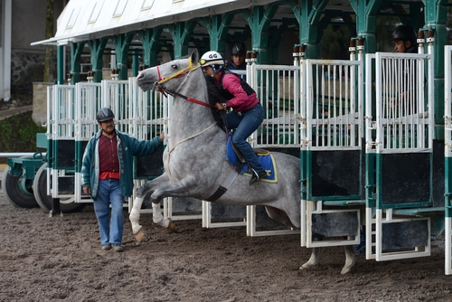 In This July 15 2014 Photo Elizabeth Garrido 27 Takes The Horse