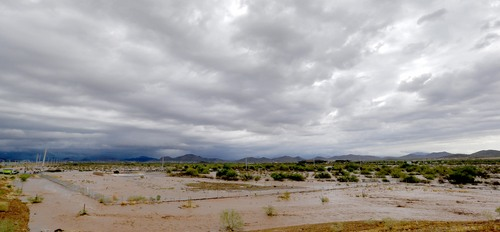 Flash flood waters overrun Skunk Creek through the Sonoran Desert, Tuesday, Aug. 19, 2014, in northwestern Phoenix. Flooding from heavy rain in the Phoenix area has forced authorities to close several major roads, including a portion of Interstate 17 about 25 miles north of the city. (AP Photo/Matt York)