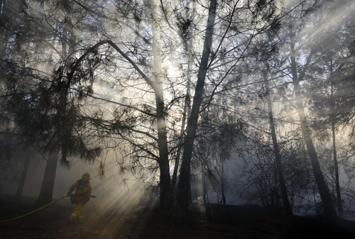 A firefighter walks through trees putting out sot fires on private property along Highway 41 just outside of Oakhurst, Calif., Monday, Aug. 18, 2014. One of several wildfires burning across California prompted the evacuation of hundreds of people in a central California foothill community near Yosemite National Park, authorities said. (AP Photo/The Fresno Bee, Eric Paul Zamora)