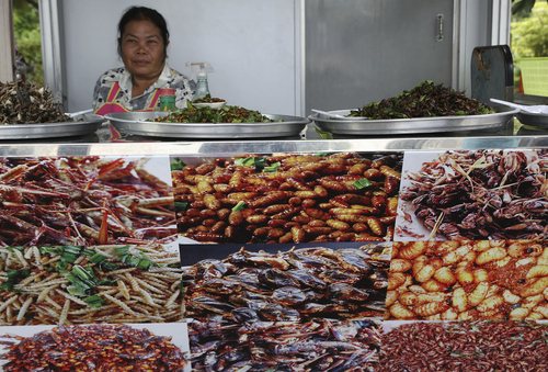 In this photo taken Aug. 5, a woman sells fried insects at a stand decorated with photos of various kinds of fried insects at a gas station in Nakhon Ratchasima province, northeastern Thailand. Six-legged livestock, as the U.N. Food and Agriculture Organization calls them, are also easier on the environment than their lesser-legged counterparts. It takes 2,900 gallons of water, 25 pounds of feed and extensive acreage to produce one pound of beef and just one gallon of water, two pounds of feed and a small cubicle to produce a pound of crickets. (AP Photo/Apichart Weerawong)