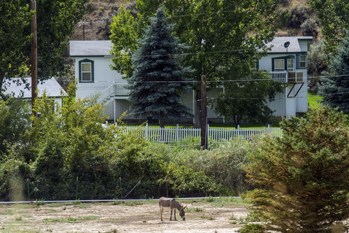Chris Detrick  |  The Salt Lake Tribune In July 2014, authorities found and removed nine FLDS boys living in this home near Pocatello, Idaho. Their caretaker, Nathan C. Jessop, has been charged with three misdemeanor counts of child abuse. Photo taken on Wednesday, Aug. 20, 2014.
