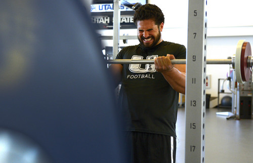 Leah Hogsten  |  The Salt Lake Tribune Utah State tight end D.J. Tialavea works out April 30, 2014, at the Utah State strengthening and conditioning facility. Tialavea is on the brink of accomplishing an NFL dream that has required great sacrifices by both he and his family.