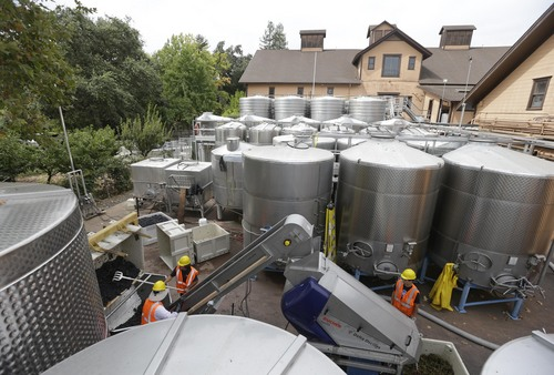 Workers sort Pinot Noir grapes with the earthquake damaged historic winery building dating from 1886 in the background at Trefethen Family Vineyards Friday, Aug. 29, 2014, in Napa, Calif. Harvest resumed at the winery on Friday in addition to the arrival of crews to shore up the leaning historic building. The 6.0-earthquake that damaged buildings and left scores of people injured in California's wine country was the largest temblor to hit the San Francisco Bay Area since the 6.9-magnitude Loma Prieta earthquake in 1989. (AP Photo/Eric Risberg)