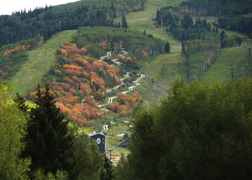 Steve Griffin     The Salt Lake Tribune   Leaves are starting to change colors at the Park City Mountain Resort  in Park City, Friday, September 5, 2014.