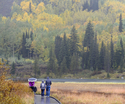 Al Hartmann  |  The Salt Lake Tribune People brave a cold rain Sunday September 21 to see the autumn leaves in full splendor at Silver Lake in Big Cottonwood Canyon