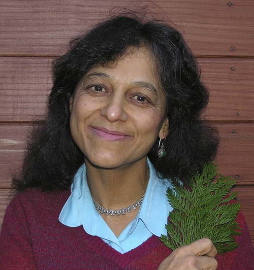 Nalini Nadkarni. Courtesy photo