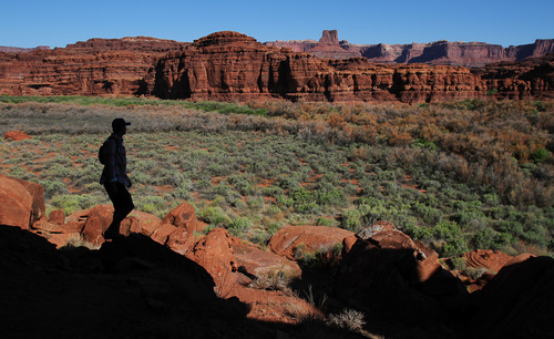 Francisco Kjolseth  |  The Salt Lake Tribune River guide Justin Malloy takes in the landscape during a side trip to see cliff dwellings and primitive art across river from Lathrop Canyon in Canyonlands.