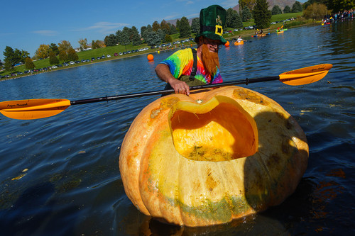 Trent Nelson  |  The Salt Lake Tribune Bryan Bennett comes to shore at the 4th Annual Ginormous Pumpkin Regatta in Sugar House Park, Salt Lake City, Saturday October 18, 2014.