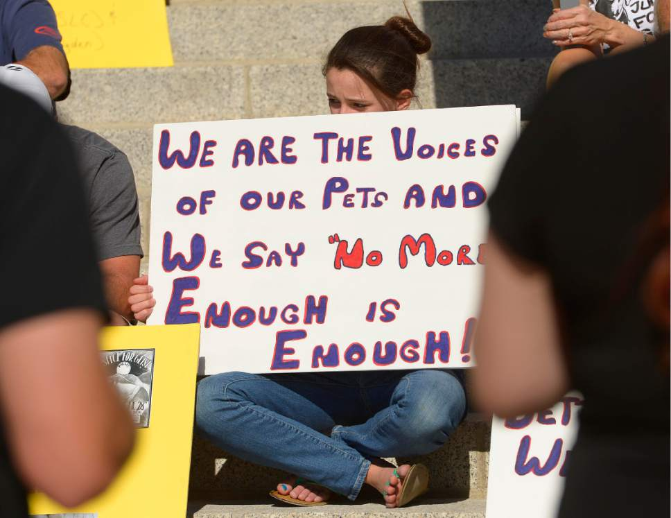 """Leah Hogsten     The Salt Lake Tribune The """"Freeze Don't Shoot"""" rally Saturday, Oct. 25, 2014, at the Utah Capitol is part of several marches taking place nationwide to rally against what organizers say is a growing trend of police shooting people's dogs."""