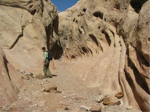 Slot canyon near Goblin Valley State Park.  Photo by Jason Bergreen.
