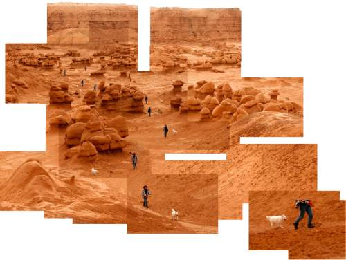 Trent Nelson  |  The Salt Lake Tribune A woman walks her dog through the hoodoos of Goblin Valley State Park in a series of photographs.