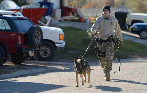 Francisco Kjolseth  |  The Salt Lake Tribune A canine unit combs the neighborhood in search of a suspect as police put four area schools on lockdown in Magna after reports that a student brought a gun to Brockbank Jr. High on Tuesday, Nov. 11, 2014. The weapon turned out to be a toy.