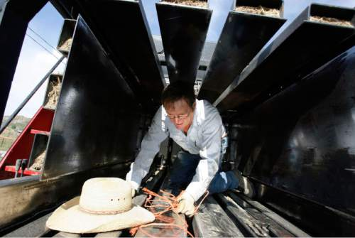 Francisco Kjolseth  |  The Salt Lake Tribune After a long wait, Jay Tanner is finally able to get a bailer up and running after replacing a broken part recently. Cattlemen and brothers Blaine, Jay and Brent Tanner have been awarded conservation awards for the management of their operation, Della Ranches.  They run up to 1,000 cattle on some 192,000 acres of private, state-an Federally owned lands in the Grouse Creek Valley. The three are partners in a family ranch that's been operating in Box Elder County for more than 130 years.