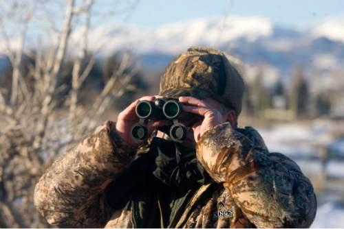 Al Hartmann  |  The Salt Lake Tribune Jon Leonard President of the Utah State Chapter of the National Wild Turkey Federation looks for wild turkeys in 2010 on the outskirts of Mountain Green in Weber Canyon.
