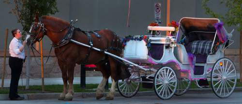 fdd5f60da1d Salt Lake City bans horse-drawn carriages - The Salt Lake Tribune
