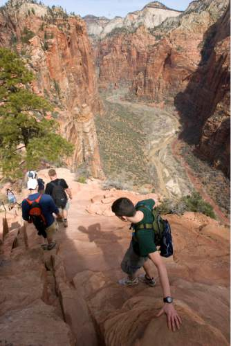 Zion National Park will turn 100 year old  this Summer.  Zion was established as Makuntaweap National Monument on July 31, 1909 by President William Taft.   Hikers carefully pick their way down the Angel's Landing Trail.   It's one of the premier hikes in the park which takes the hiker up and a steep rock spine that climbs to a magnificent view of the Virgin River and Zion Canyon below.  The hikes is not for those with fear of heights.  An anchor chain is embedded in the rock in steep places along the trail that hikers can grab onto for safety.   Al Hartmann/The Salt Lake Tribune     3/25/2009