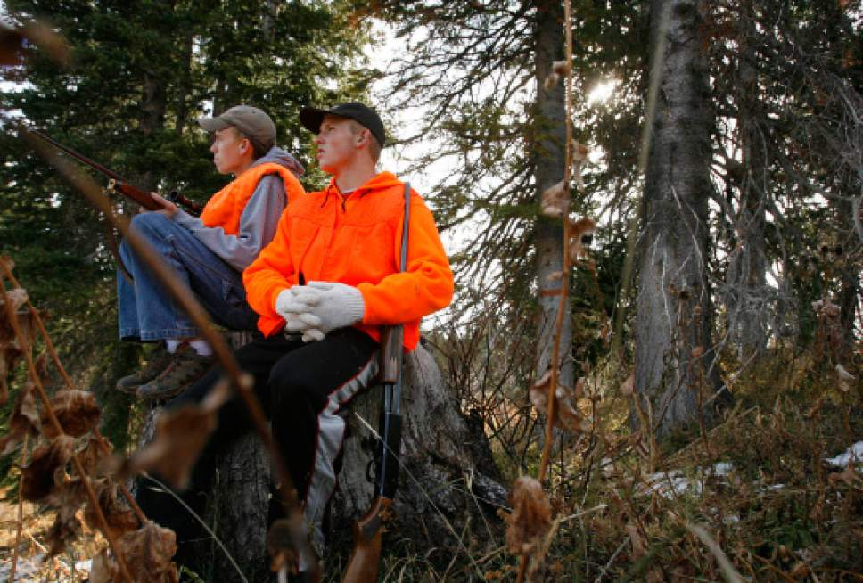 Colton Thompson, 16, (right) of Clinton Austin Bennett, 16, (left)of Riverdale scope the  hills and forest near Six Bit Springs in the Monte Cristo area of Cache National Forest. The 2008 general rifle deer hunt opened at dawn Saturday, with more than 60,000 annual participants. Photo by Leah Hogsten/ The Salt Lake Tribune [city} 10/18/08
