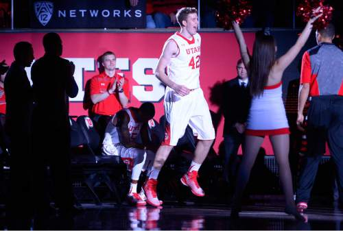 Leah Hogsten  |  The Salt Lake Tribune Utah Utes forward Jakob Poeltl (42) hits the court during starting lineups. The University of Utah leads Carroll College 54-23 Tuesday, December 30, 2014 at the Jon M. Huntsman Center.