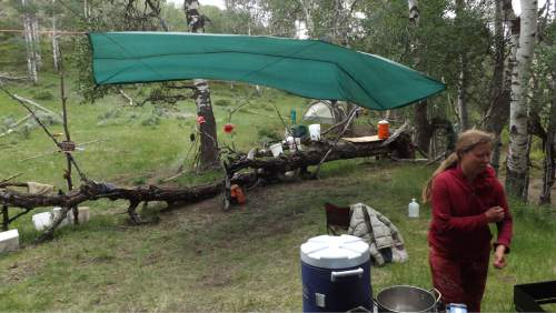 """David Self Newlin 