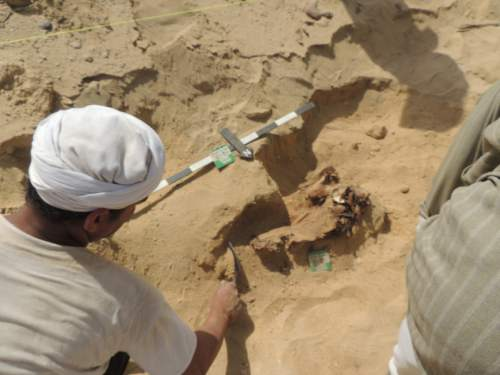 photo courtesy BYU  Excavation at the Fag el-Gamous cemetery in Egypt.